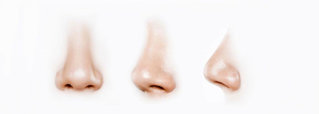 Nose dimensions